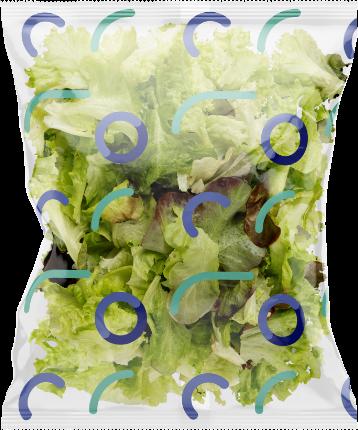 warzywa laminaty
